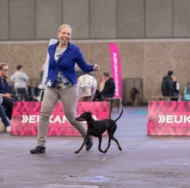 International Dogshow in Oss 26 May 2020